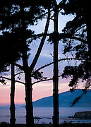 Sunset paints the ocean, mountains, and sky in beautiful colors, framed by the forests of Big Sur
