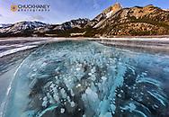 Mount Abraham at sunrise with methane ice bubbles under clear ice on Abraham Lake near Nordegg, Alberta, Canada