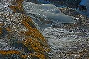 Detail of Nestor Falls<br />Nestor Falls<br />Ontario<br />Canada
