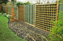 Making a border of annuals<br /> Before shot of annual border