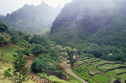 Hawaii, Kauai, National Tropical Botanical Garden, Lumahai Valley.