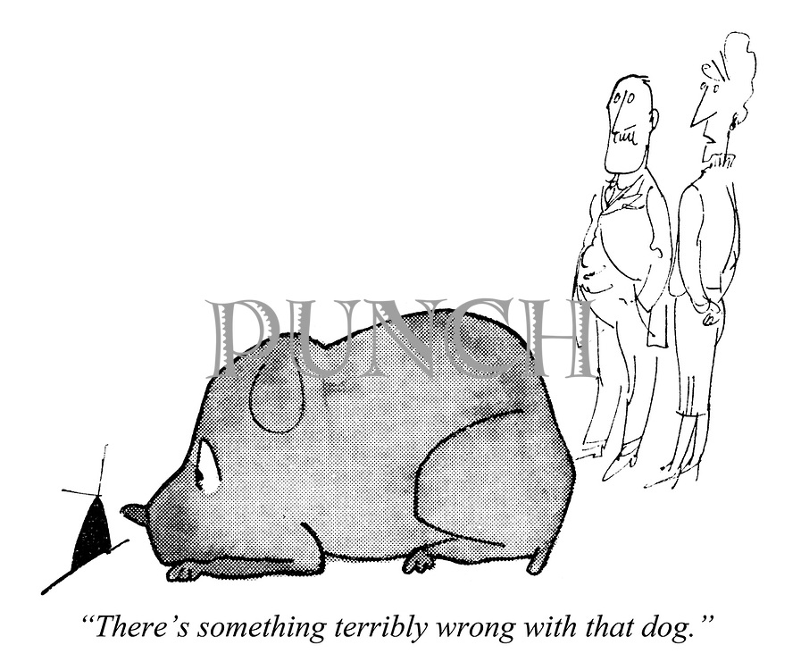 "(""...and his dog."") ""There's something terribly wrong with that dog."""