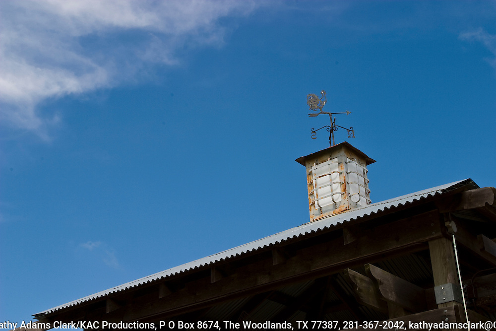 Weather vane with a crowing rooster, on tope of Martha's Bloomers Nursery, near Navasota, Texas. May