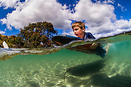 Underwater split level view of a boy (9yrs) playing in the Omaha shallow estuary with his boogie board. New Zealand