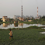 A farmer tends to his fields outside the coal-powered electricty plant in Phai Lai, about 70 kilometers east of Hanoi, Vietnam, 14 September, 2007.