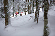 Riders during stage 5 of the first Snow Epic, the Trübsee climb near Engelberg, in the heart of the Swiss Alps, Switzerland on the 17th January 2015<br /> <br /> Photo by:  Nick Muzik / Snow Epic / SPORTZPICS