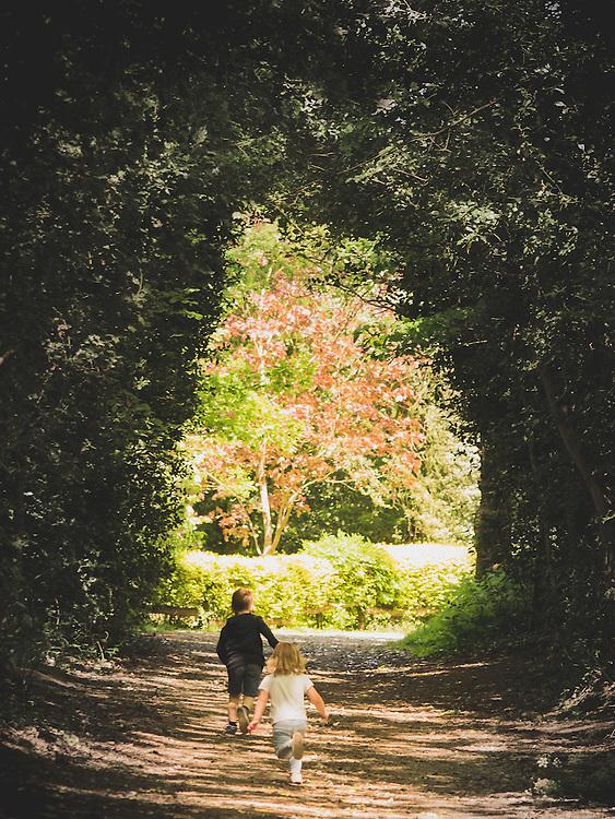 Frankie, Lois, Betsy, Dan & Faye on a walk in Hockley Woods