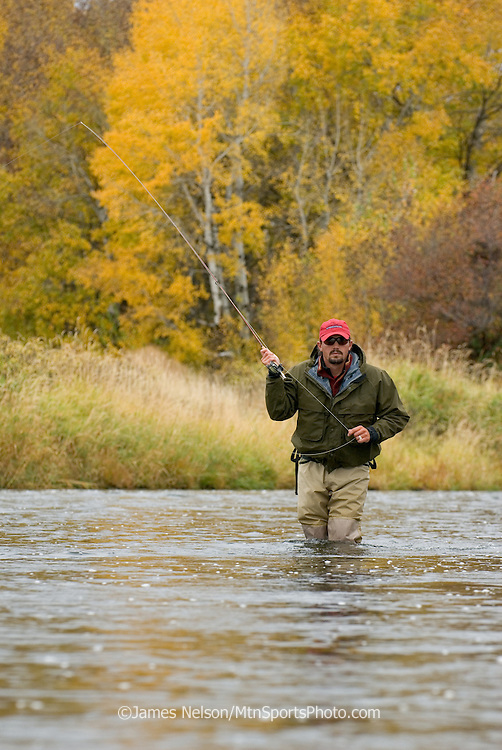 Casting a fly for trout during a fall day on the lower Henry's Fork of the Snake River, Idaho.