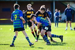 - Mandatory by-line: Dougie Allward/JMP - 24/03/2019 - RUGBY - Bristol Grammar School Playing Fields - Bristol, England - Nando's Cup