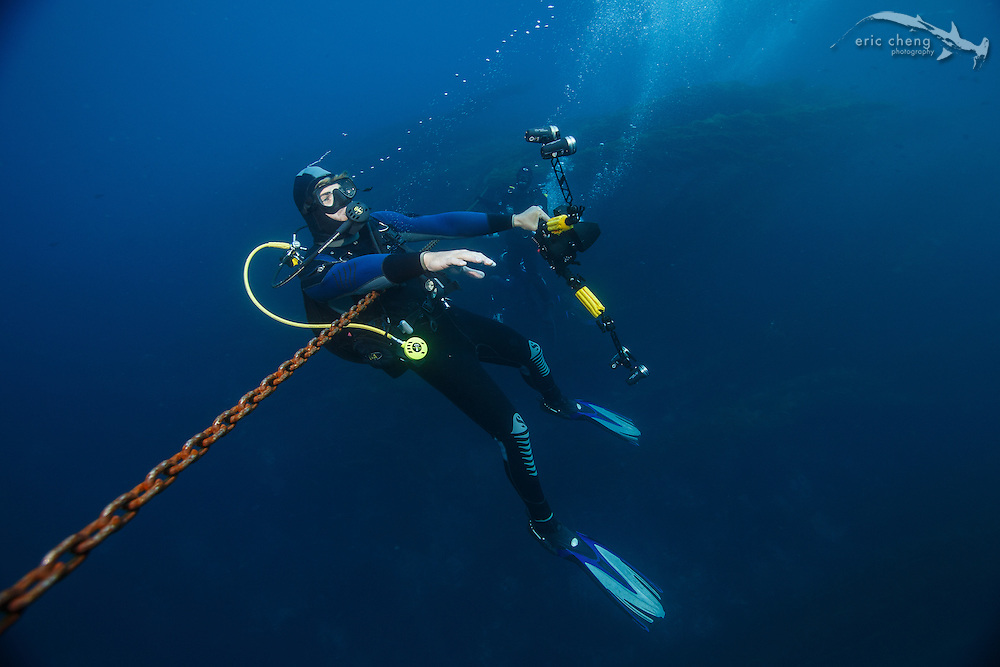 A scuba diver (Joe Platko) hangs on the anchor line during a safety stop at Eagle Reef, Catalina, Channel Islands, California.