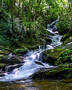Roaring Fork Falls, located in the Pisgah National Forest in Burnsville, North Carolina.<br /> <br /> &copy; Photography by Kathy Kmonicek