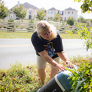 Carla Morris pours water from a cooler into a patch of wild flowers on the side of the road in Potomac, Maryland, on Tuesday, September 26, 2017. She is an avid gardener and had concern for the wildflowers along the road in her neighborhood and decided to water them with the melted ice from a cooler she had for her son's soccer practice. A native of Ripon, Wisconsin, Morris moved to Potomac about 7 years ago. Maryland's 6th District was redistricted in 2011, combining rural northern Maryland regions with more affluent communities like Potomac and Germantown. <br /> CREDIT: John Boal for The Wall Street Journal<br /> GERRYMANDER
