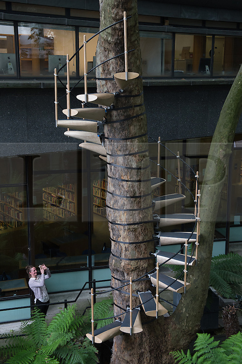 © London News Pictures. 23/06/15. London, UK. A Royal College of Art student looks at 'Canopy Stair' by Rob Featherstone McIntyre and Thor Ter Kulve which is in the Royal College of Art Graduate Exhibition 2015, Central London. Photo credit: Laura Lean/LNP