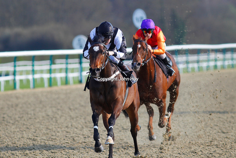 Limegrove and T P Queally winning the 4.55 race
