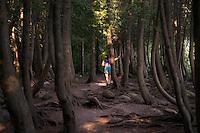 Cyprus Lake Trail, Bruce Natural Park, Ontario, Canada.