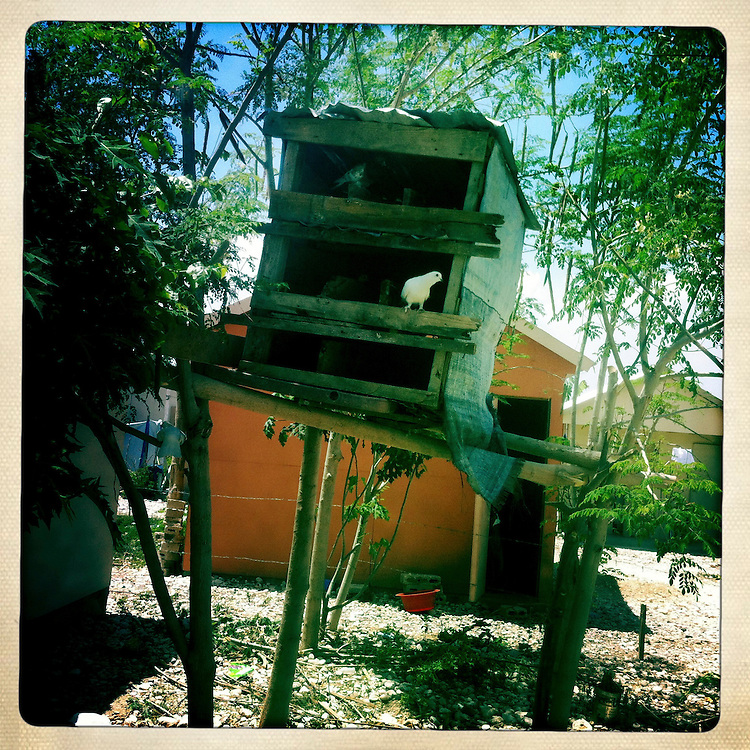 A pigeon coop at the Corail camp on Friday, April 6, 2012 in Port-au-Prince, Haiti.