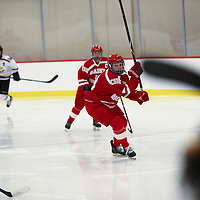 Women's Ice Hockey: College of St. Benedict Blazers vs. University of Wisconsin-Stevens Point Pointers