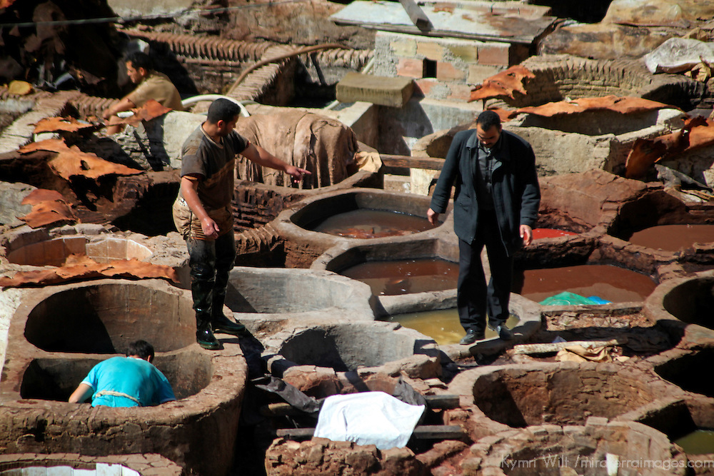 Africa, Morocco, Fes. Tanneries of Fes, where leather is dyed and treated.