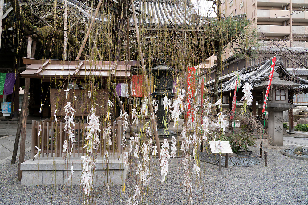 Rokkakudo temple Kyoto with O-mikuji prayers tied to willow tree Japan