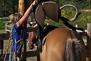 Young woman saddling horse