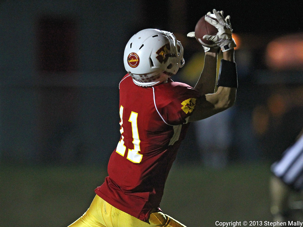 Marion's Quinn Cannoy (11) pulls in a touchdown reception during their game at Thomas Park Field in Marion on Friday, September 20, 2013.