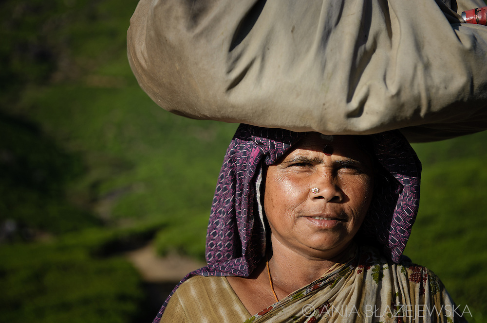 India, Kerala. Portrait of a tea picker from Munnar.
