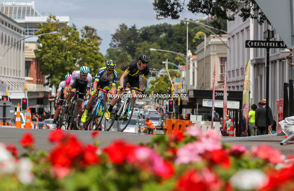 Elite Mens Road Race, Hawke's Bay Summer Cycling Carnival - BDO Elite & U23 Road National Championships, Napier, Hawkes Bay, New Zealand, 07 January  2018. Photo by John Cowpland / photosport.nz