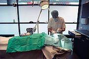 Nederland, Nijmegen, 26-2-2009in het mortuarium verwijdert een patholoog het hoornvlies van een overleden man ivm orgaandonatie.Foto: Flip Franssen