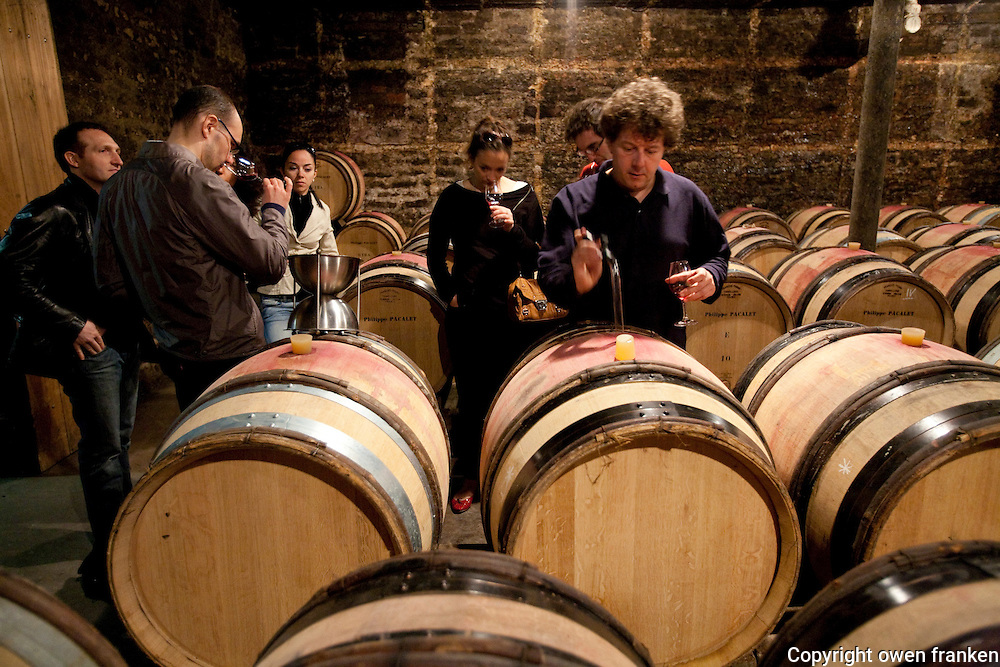 wine tasting in the cellars of Philippe Pacalet, Beaune-Burgundy...