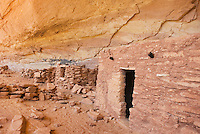 Anasazi ruins at Perfect Kiva Site, Bullet Canyon, Grand Gulch Primitive Area, Cedar Mesa Utah Bears Ears National Monument