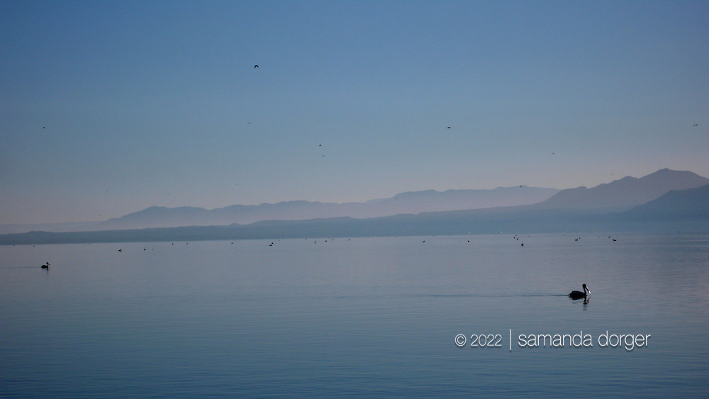 The Salton Sea, Calif.