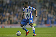 Brighton midfielder, winger, Kazenga LuaLua (30) during the Sky Bet Championship play-off second leg match between Brighton and Hove Albion and Sheffield Wednesday at the American Express Community Stadium, Brighton and Hove, England on 16 May 2016.