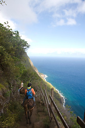 Hawaii: Molokai, the Mule Ride from the cliff tops down 1,600 feet to the leper colony at Kalaupapa. Model released..Photo himolo134-71832.Photo copyright Lee Foster, www.fostertravel.com, lee@fostertravel.com, 510-549-2202
