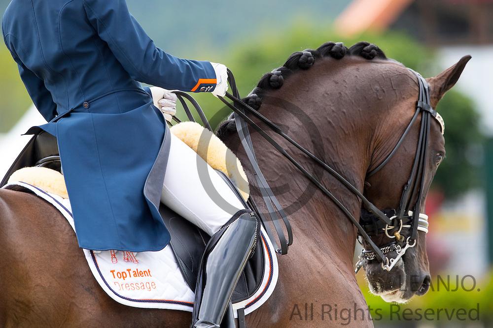 Maxime van der Vlist - Bailey<br /> European Championships Dressage U25 2016<br /> &copy; DigiShots