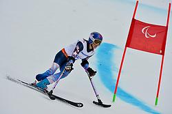 Melanie Schwartz, Women's Giant Slalom at the 2014 Sochi Winter Paralympic Games, Russia