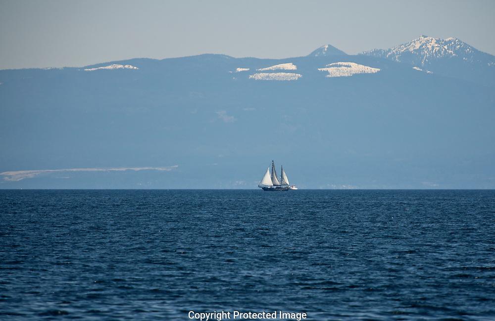 Yacht In Nanaimo Habour,  Naniamo,  Nanaimo Harbour,  British Columbia,  Canada,  (Photographer;  Isobel Springett),