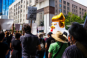 Emergency Rally: Say No to The Nazis! Seattle, WA. August 20, 2017.