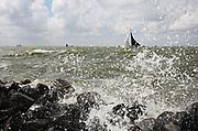 Traditional Frisian boats ((skûtsjes) sailing at the IJsselmeer // Skûtsjesilen op het IJsselmeer bij Staveren.