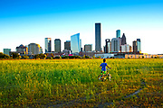 The skyscrapers of downtown Houston rise above undeveloped land on the northside of the city.