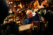 A musician performs traditional Irish music in Dingle, County Kerry, on the west coast of Ireland, home of the famed dolphin Fungi..In 1984, the lone dolphin was observed escorting the fishing boats. The fishermen named him Fungi. Within months, he had become such a fixture that local officials declared him a permanent resident. .For more than 20 years, Fungi has stayed in the harbour and befriending humans, becoming one of Ireland's top attractions..Every summer, Dingle town?s 3,000 inhabitants are overrun by tourists, who have come to see Fungi on boat trips..Fungi, a male bottlenose, is around 30 years old. He weighs about 250 kilos and is about four metres in length.