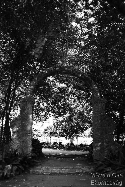 Kroatia 2012-06.<br /> Parken på Lopud.<br /> Foto: Svein Ove Ekornesvåg