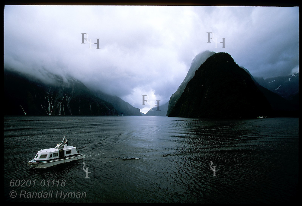 Tender boat, 'Tender Love,' plies waters of Milford Sound; Fiordland National Park, New Zealand.