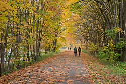 United States, Washington, Snohomish, people walking on path in fall.