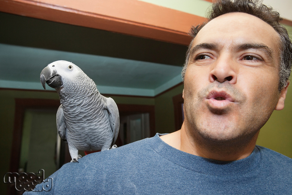 Close-up of mature man with parrot on shoulder