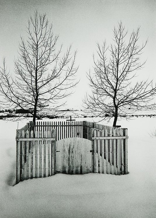 Two Trees, Mono County Cemetery