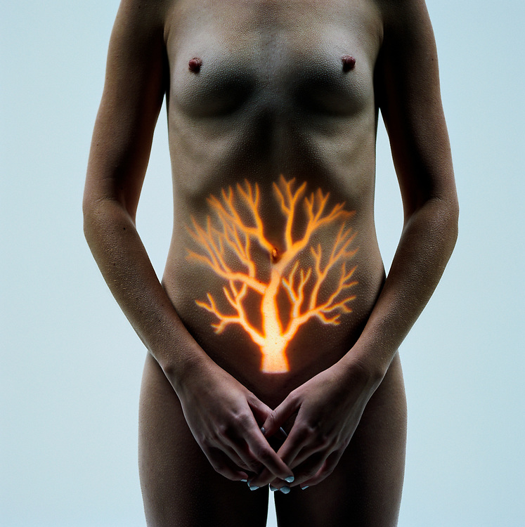 Naked woman with tree pattern projected onto stomach, mid section