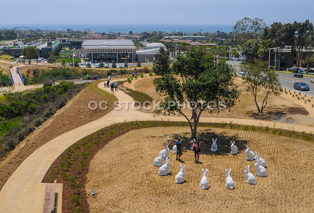 White Concrete Bunnies at Newport Beach Civic Center and Park