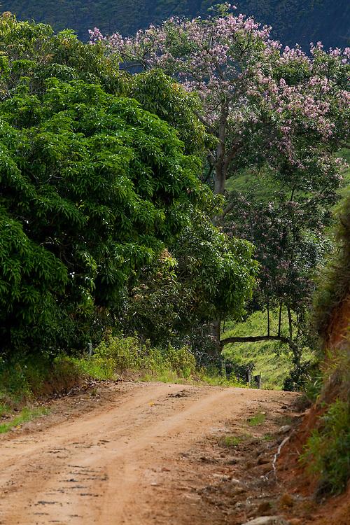 Conceicao do Castelo_ES, Brasil...Detalhe da rota Imperial em Conceicao do Castelo...Detail of Imperial route in Conceicao do Castelo...Foto: LEO DRUMOND / NITRO