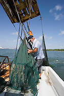 KEVIN BARTRAM/The Daily News.Jerome Kunz brings the nets aboard the St. Vincent while shrimping in the Galveston Ship Channel on Wednesday, July 12, 2006. Kunz works alone while catching shrimp that he sells to a local bait camp.