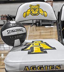 2013 A&T Volleyball vs Alabama State & UNCG  (Aggie / Spartan Volleyball Invite)